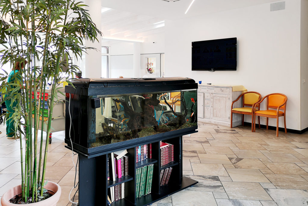 Residenza Canevaro sala con acquario